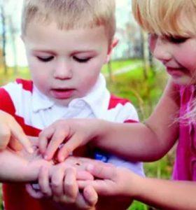 POUR le maintien des droits à l'Instruction en Famille : Signez la pétition !